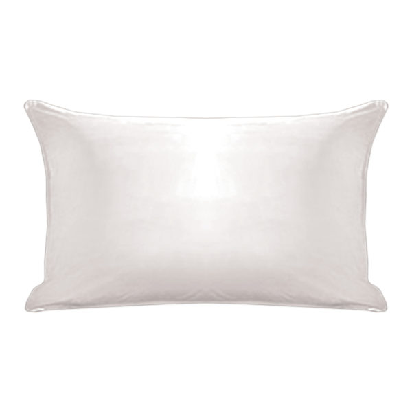 Traditional Plush Pillow 2