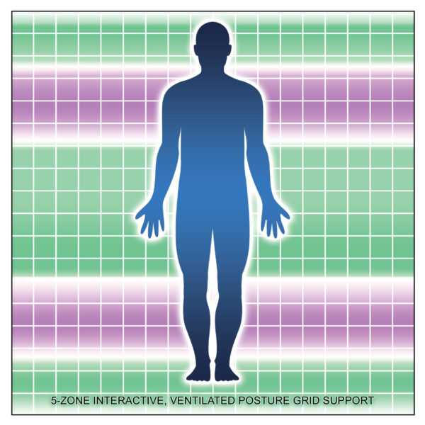 5-Zone Interactive Posture Grid