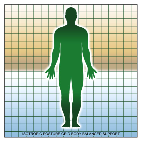 Isotropic Posture Grid Support