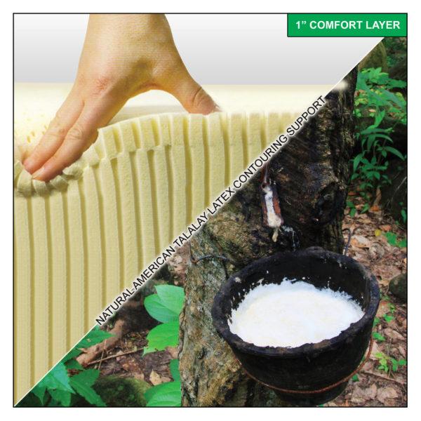 """1"""" Pure & Natural American Talalay Latex Comfort Layer"""
