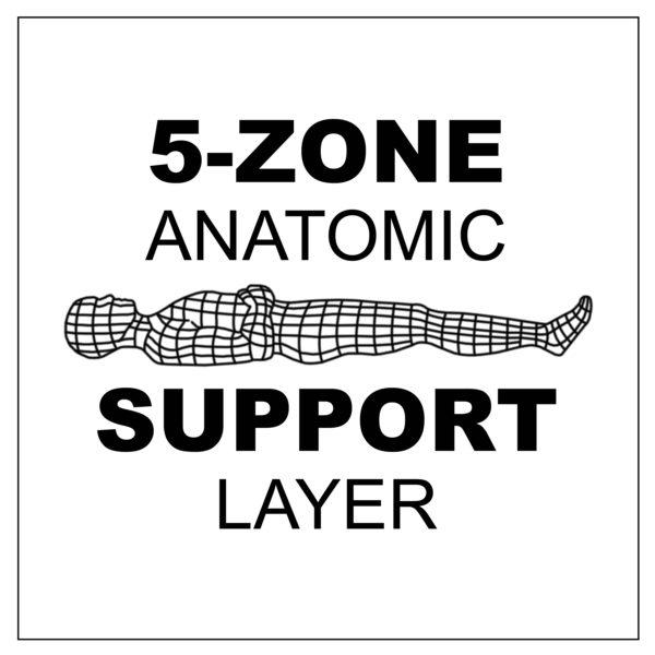 5-Zone Anatomic Support Layer