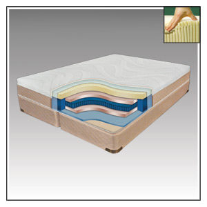 NATURAL LATEX BEDS