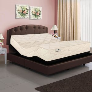 821 Latex Coil Mattress & Adjustable Base