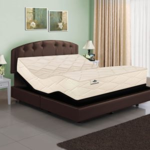 801 Latex Coil Mattress & Adjustable Base