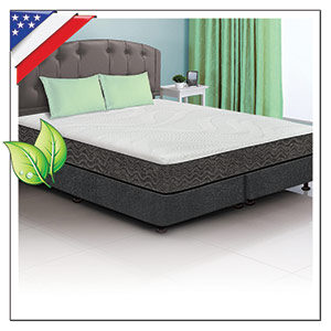 NATURAL LATEX SUPPORT BEDS