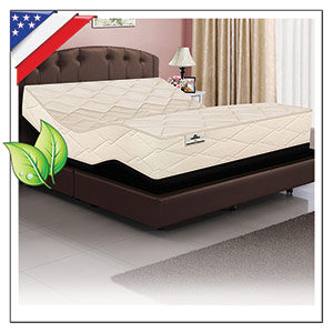 NATURAL LATEX ORGANIC BEDS WITH ADJUSTABLE POWER BASE